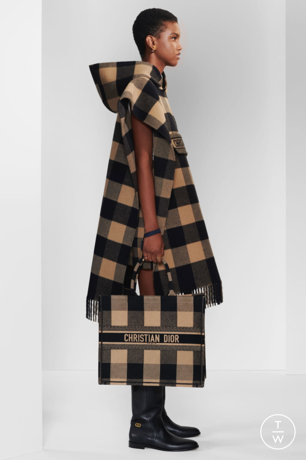 Fashion Week Paris Pre-Fall 2020 look 40 from the Christian Dior collection womenswear
